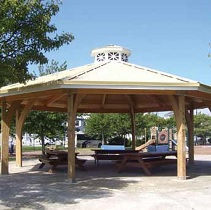 Engineered wood structures pavillion