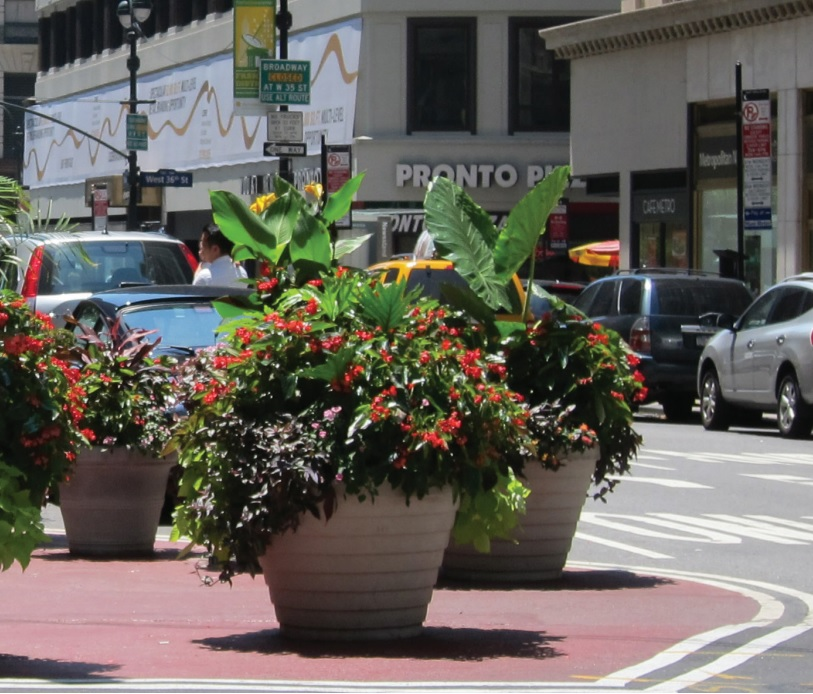 commercial planters streetscape